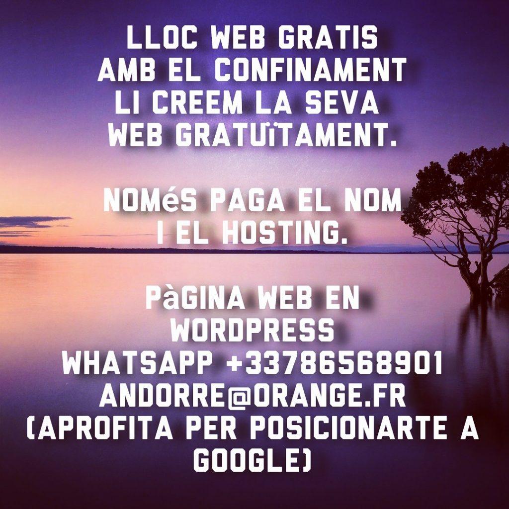 Creació i gestió de continguts • Màrqueting per a Internet Gestió de Xarxes Sociales webs y tiendas online en Andorra